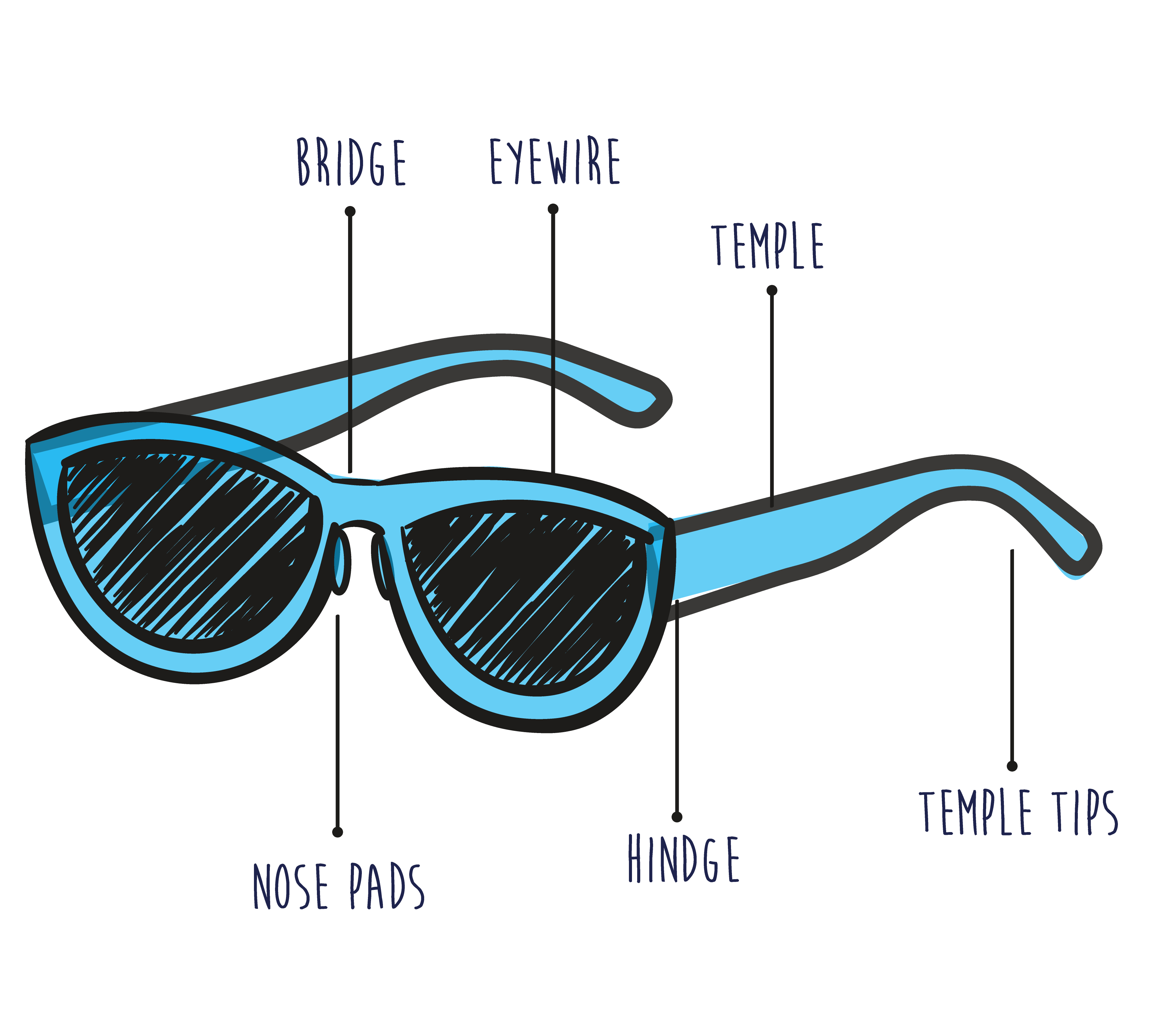 Basic Frame Anatomy